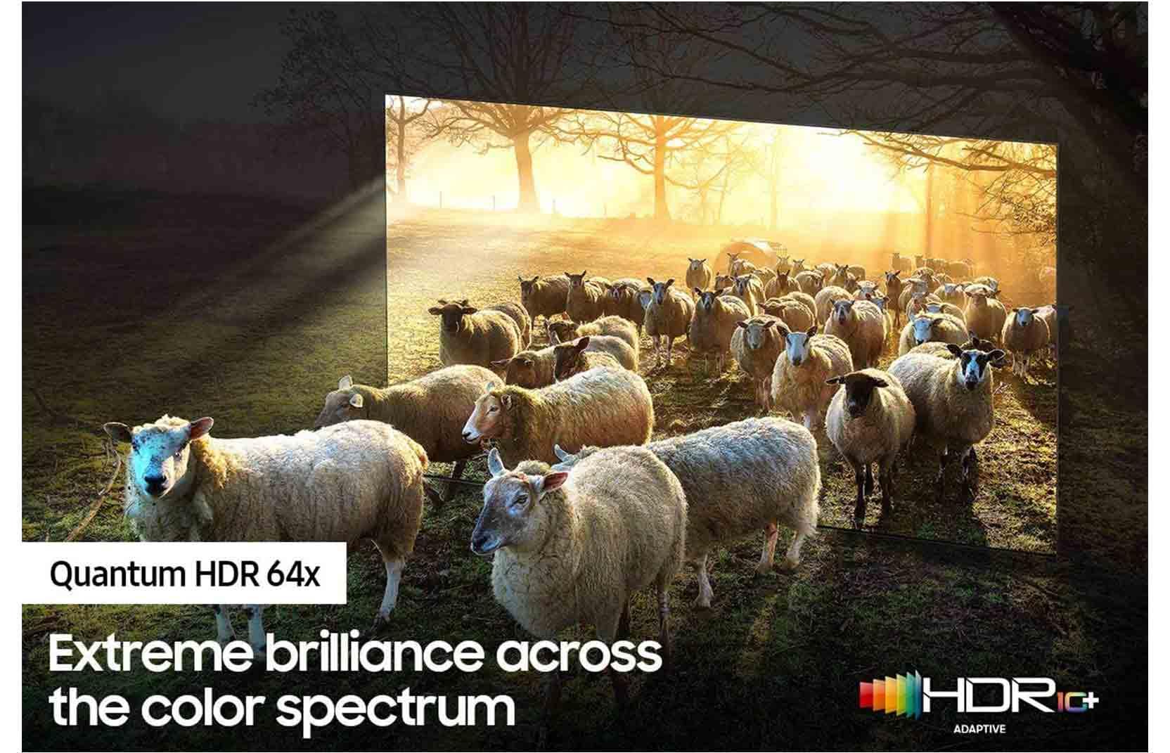 Samsung-163-Cm-65-Inch-Neo-QLED-8K-Smart-TV